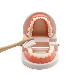 We teach children how to brush their teeth 2