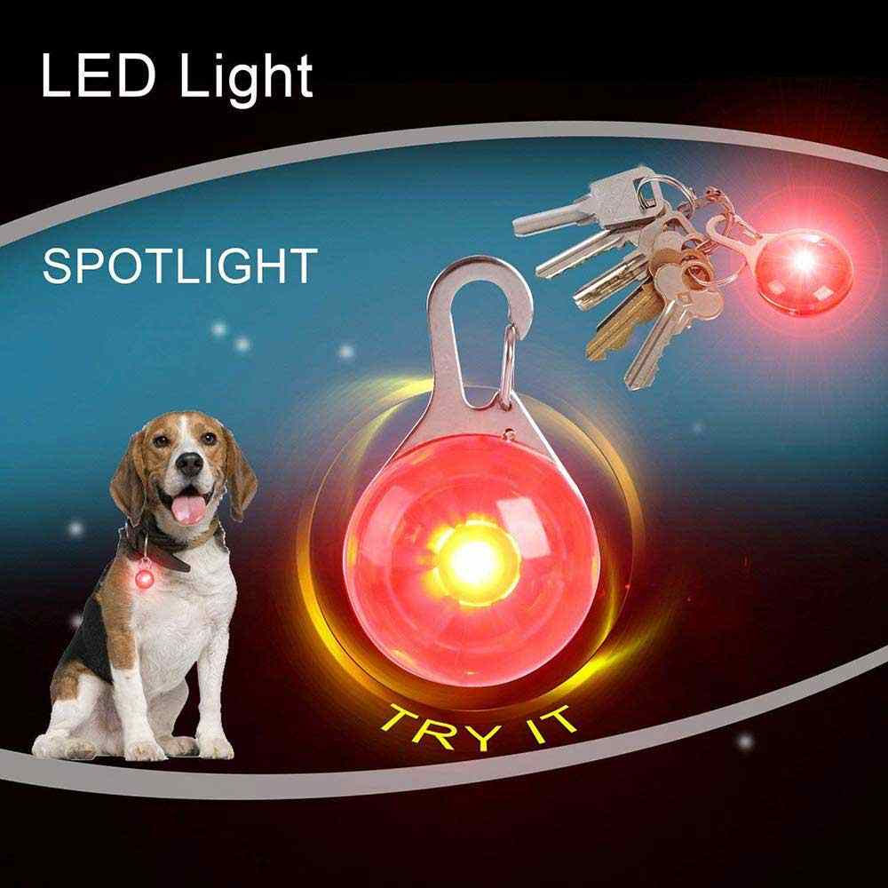Pet Cat Dog Collar Night Safety LED Flashlight Leads Lights Glowing Necklace Luminous Bright Decoration Collars For dogs