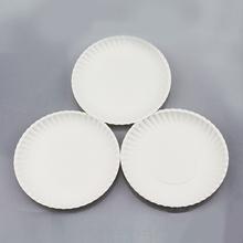 White paper plate birthday party fruitcake BBQ tray children art handmade material