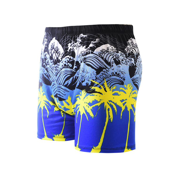 MEN'S Swimming Trunks Fashion Casual Swimming Trunks Men's Boxer Hot Springs Quick-Dry Swimming Pool Hot Selling Manufacturers D