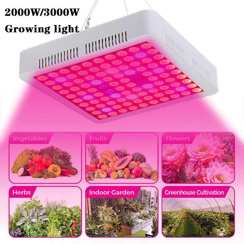 Smuxi Tumbuh Lampu LED Grow Light 2000 W/3000 W Full Spectrum Tanaman Lampu IP65 Tanaman Bunga Bibit Budidaya US/EU Plug