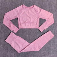 ShirtsPantsPink - Women Seamless Yoga Set Fitness Sports Suits