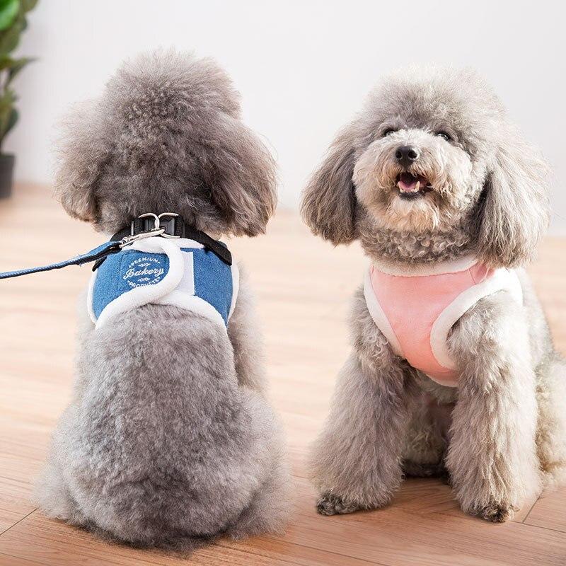 Dog Hand Holding Rope Dog Chain Vest Style Gato Negro Sheng Dog Small Dogs Medium-sized Dog Teddy Pet Supplies
