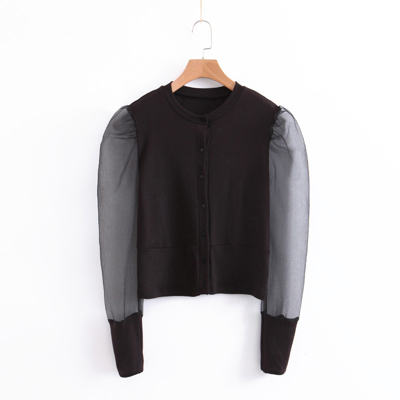 Long-Puff-Sleeve Transparent Women Brand Blouse Black Stretchy Chic Casual Solid Stylish