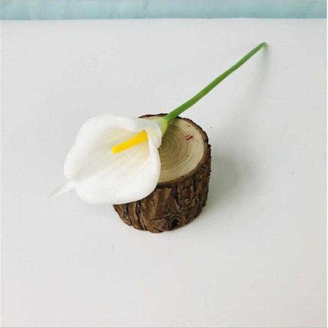 A Yellow White Calla