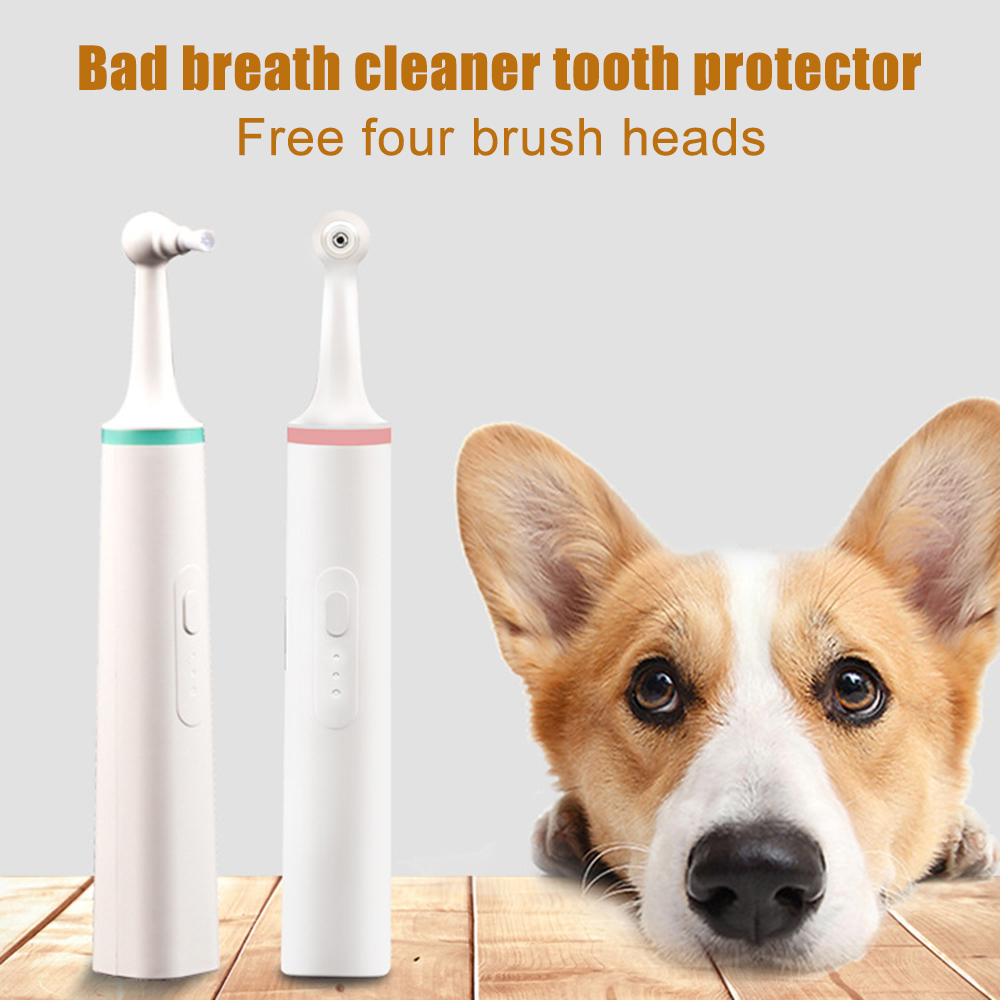 Portable Pet Dog Electric Toothbrush Pet Teeth Plaque Removal Dog Tooth Brush Teeth Polisher Oral Hygiene Care Whitening Tools