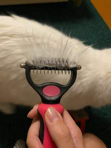 Hair-Removal-Comb-Brush Knot-Cutter Shedding-Tools Dog-Grooming Pet-Products Double-Sided