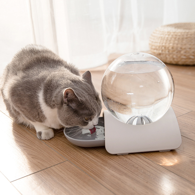 2.8L Pet Cat Bubble Automatic Water Feeder Fountain For Pets Water Dispenser Large Drinking Bowl Cat Drink No Electricity NEW 1
