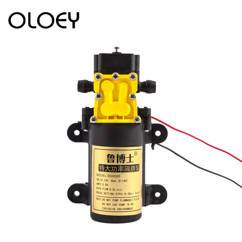 DC12V 8L/min Large Flow Rate Agricultural Electric Water Pump Micro High Pressure Diaphragm Water Sprayer Car Wash