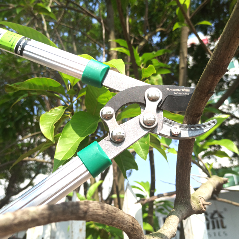 Image 5 - RDDSPON Pruning Shear Garden Tools Labor saving SK5 Strong Branch Shears Long handle Replaceable Blade Sharp Durable very lightPruning Tools   -