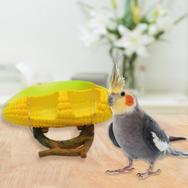 Fruit Deco Parrot Feeding Bowl  2