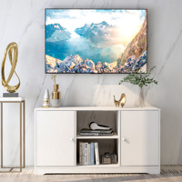 43Inch TV Stand Cabinet With 2 Door And Shelves TV Table Entertainment Center Media Console Storage Cabinet For Living Room Home