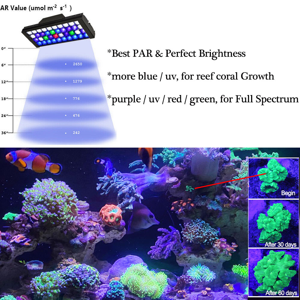 Купить с кэшбэком PopBloom Aquarium Lighting Controller Aquarium Led Light Lamp for Aquarium Marine Coral Reef Grow Light Fish Tank Bulb Turing30