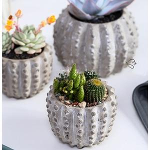 Image 2 - Kaktüs Şekli Saksı Beton Kalıpları Etli Bitkiler Için Yuvarlak Alçı Silikon Kalıplar Çimento Kil El Sanatları Kalıp