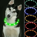 Fashion Candy Colorful Warn Led Dog Usb Collar Flashing In Dark Pu Lighting Safety Led Pet Collar Wide Luminous Pet Products,