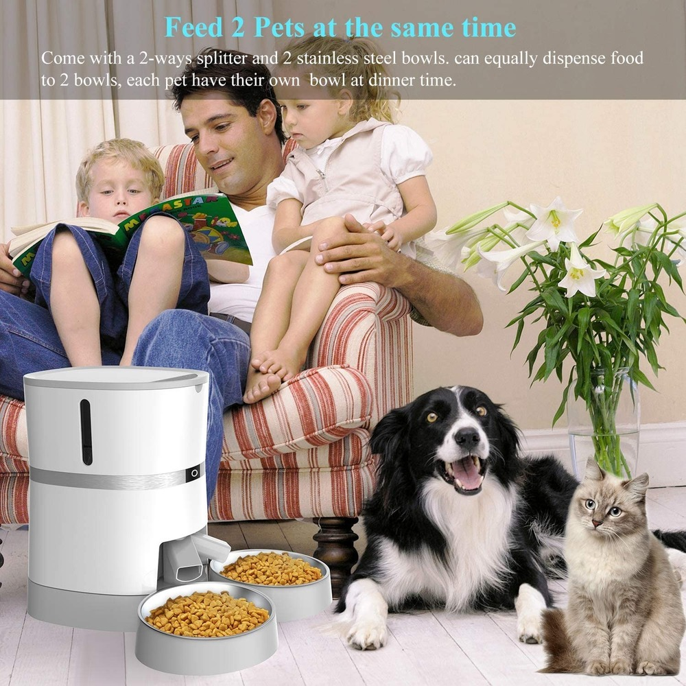 Cats Feeding & Watering Accessories New Arrivals Automatic Cat Pet Feeder Food Dispenser  My Pet World Store