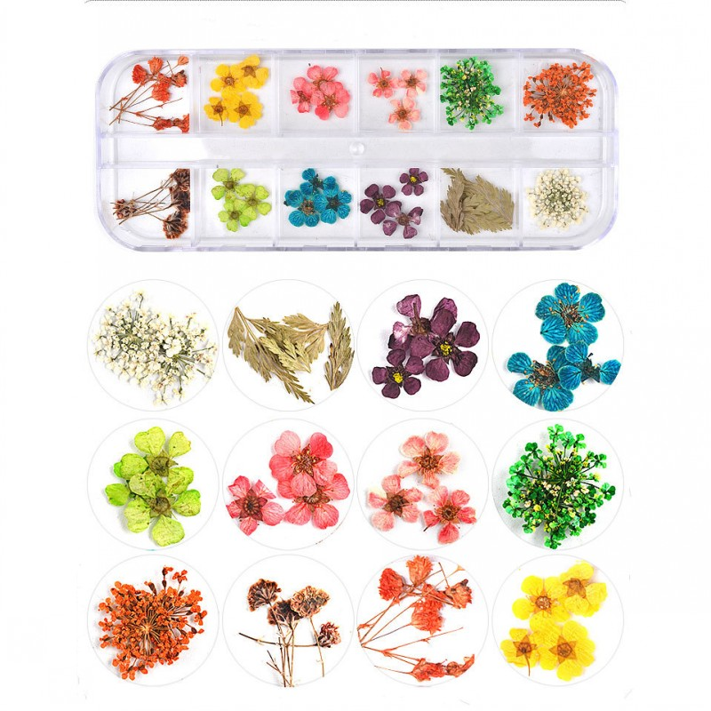 1 Box Dried Flowers Nail Art <font><b>12</b></font> Colors <font><b>3D</b></font> Dry Flowers for Nails Tiny Dried Flowers for Natural Flower Nail Art Design Decoration image