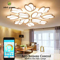 Tulip Multi-Head Acrylic Ceiling Light modern led ceiling light living room bedroom dimmable lamp art deco fixture with RC APP