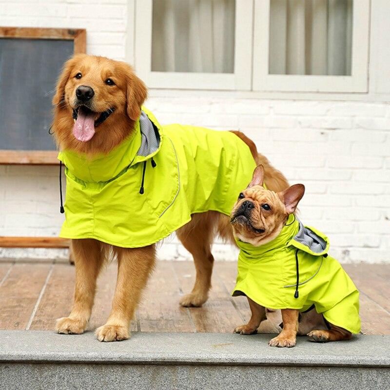 Dog Raincoat Golden Retriever