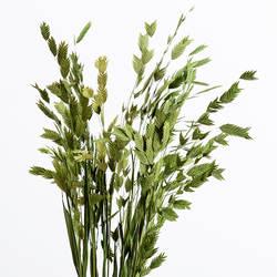 Хипстер натуральные сухоцветы букет свежесть сохраненные свежими цветок украшение дома Алмазная трава длинная 70 см подставка под фото
