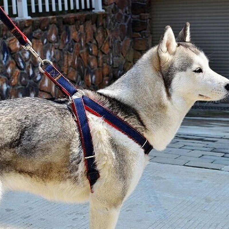 VOGVIGO 2019 חדש הגעה חמה מכירות S/M/L צבעוני ז 'אן ג' ינס רצועה לרתום כלב צווארון שרשרת חתול חבל חגורת מתכוונן צווארון כלבים