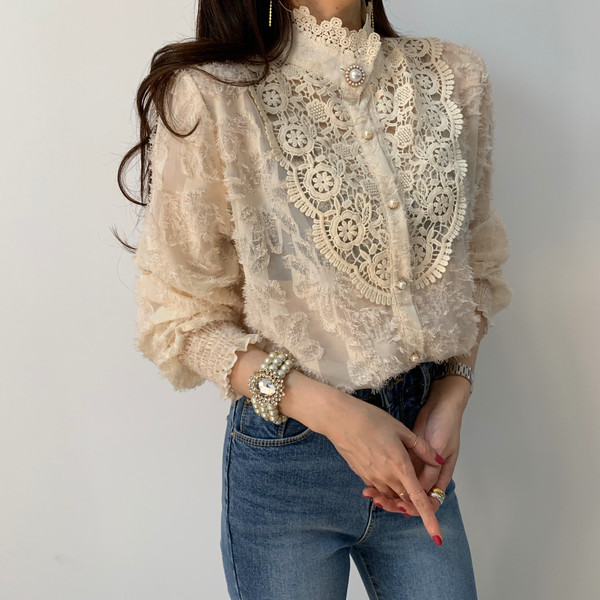 H9b4bb693e7e74d03ad1e760aaf2e5f07t - Spring / Autumn Korean Stand Collar Long Sleeves Crochet Lace Button Blouse