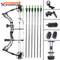 Outdoor Hunting Compound Bow Shooting Competition 30-70lbs Alloy Pully Bow Set With Bow Sight Arrow Rest For Archery Training