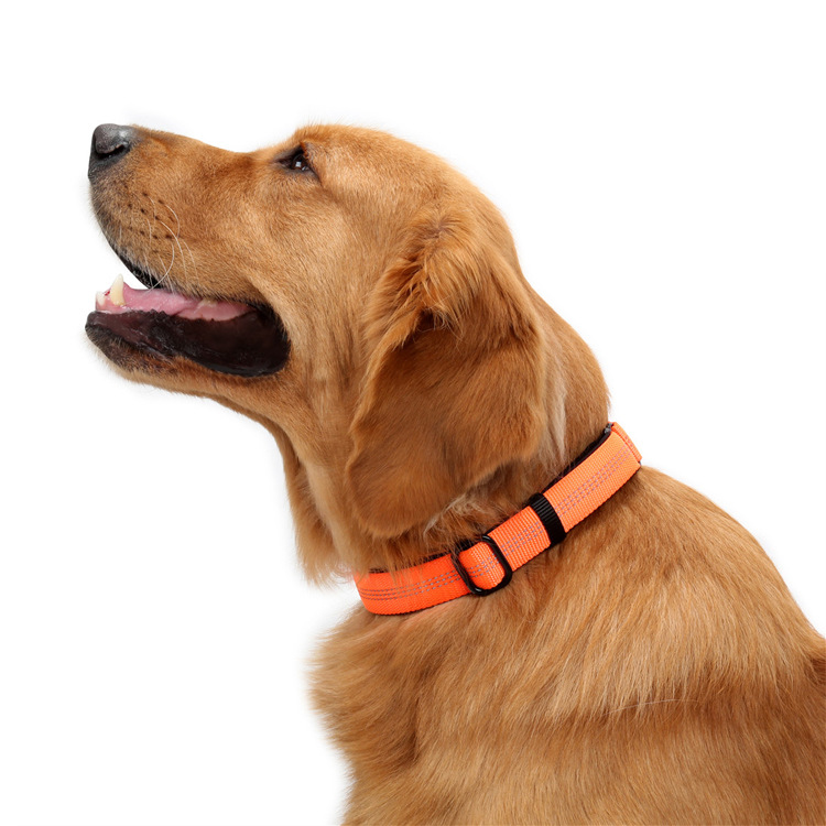 2019 New Style Pet Collar Dog Neck Ring Medium Large Dog Adjustable Neck Ring Double D Ring Reflective Neck Ring Three-Color
