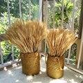 50 шт/каждый пучок натуральных пшеницы уши засушенные цветы реальные пшеницы Свадебная вечеринка украшения пшеницы букет «сделай сам» для д...
