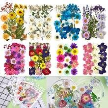 1 sac coloré réel séché fleur plante pour aromathérapie bougie époxy résine pendentif collier fabrication de bijoux artisanat bricolage accessoires