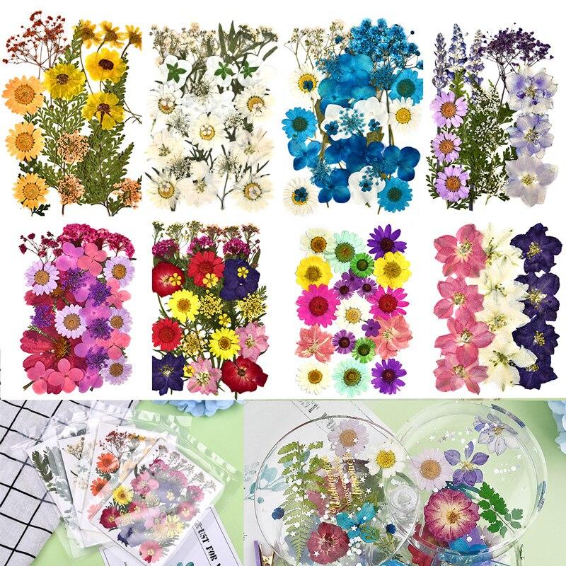 1 saco colorido real seco flor planta para aromaterapia vela resina epóxi pingente colar jóias fazendo artesanato diy acessórios|Flores secas artificiais|   -