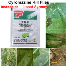 Bonsai Insecticide Plant Protection-Garden Pest Kill Flies Systemic Agricultural-Medicine