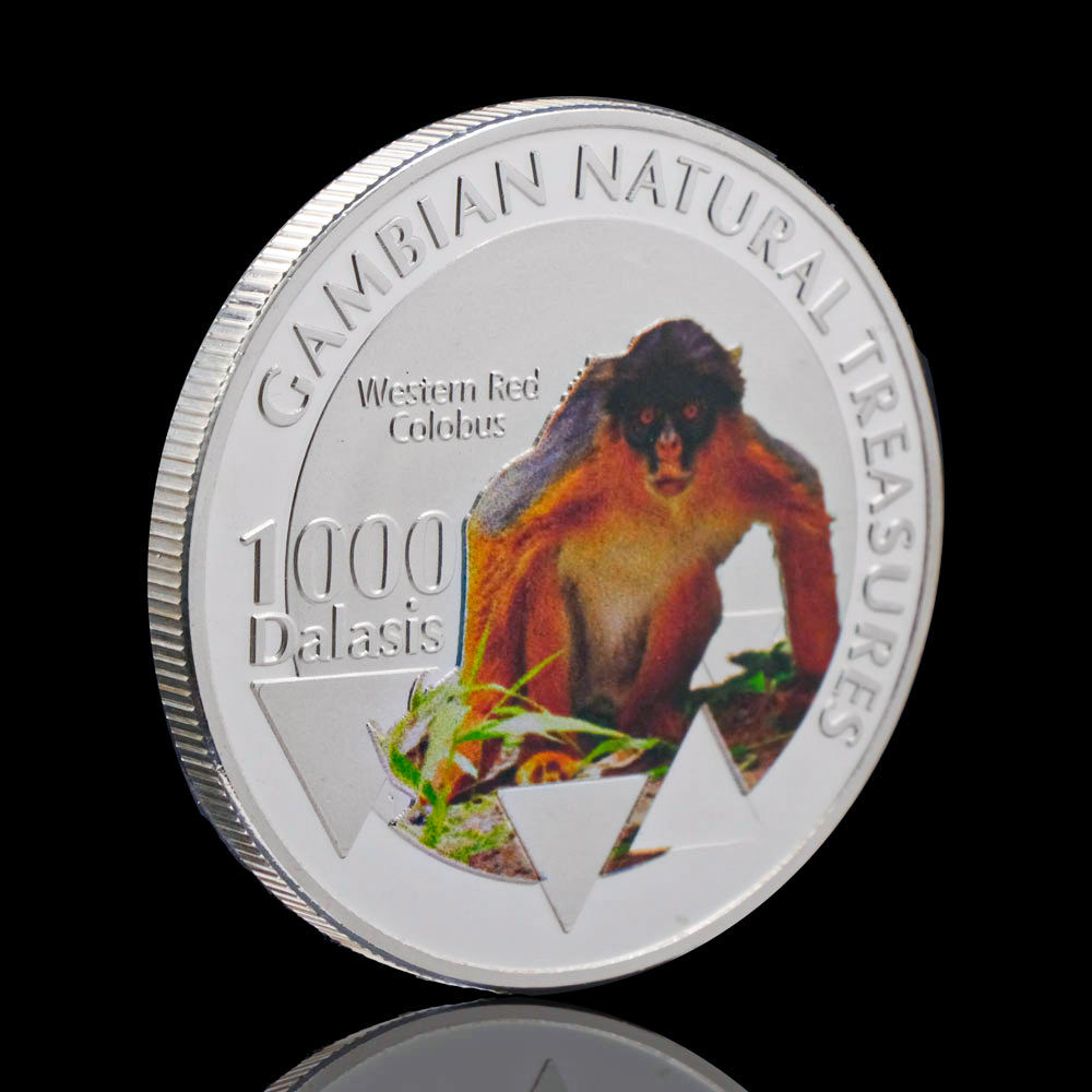 Silver Plated Gambian Natural Treasumres Westem Red Colobus Monkey Medal Souvenirs Coin Animal Collectible Coins Gift