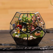 Terrário geométrico para escritório, plantador de succulentas, recipiente de plantas, vaso de flores, jardim das fadas, vidro de polyhedron, terrário bonsai