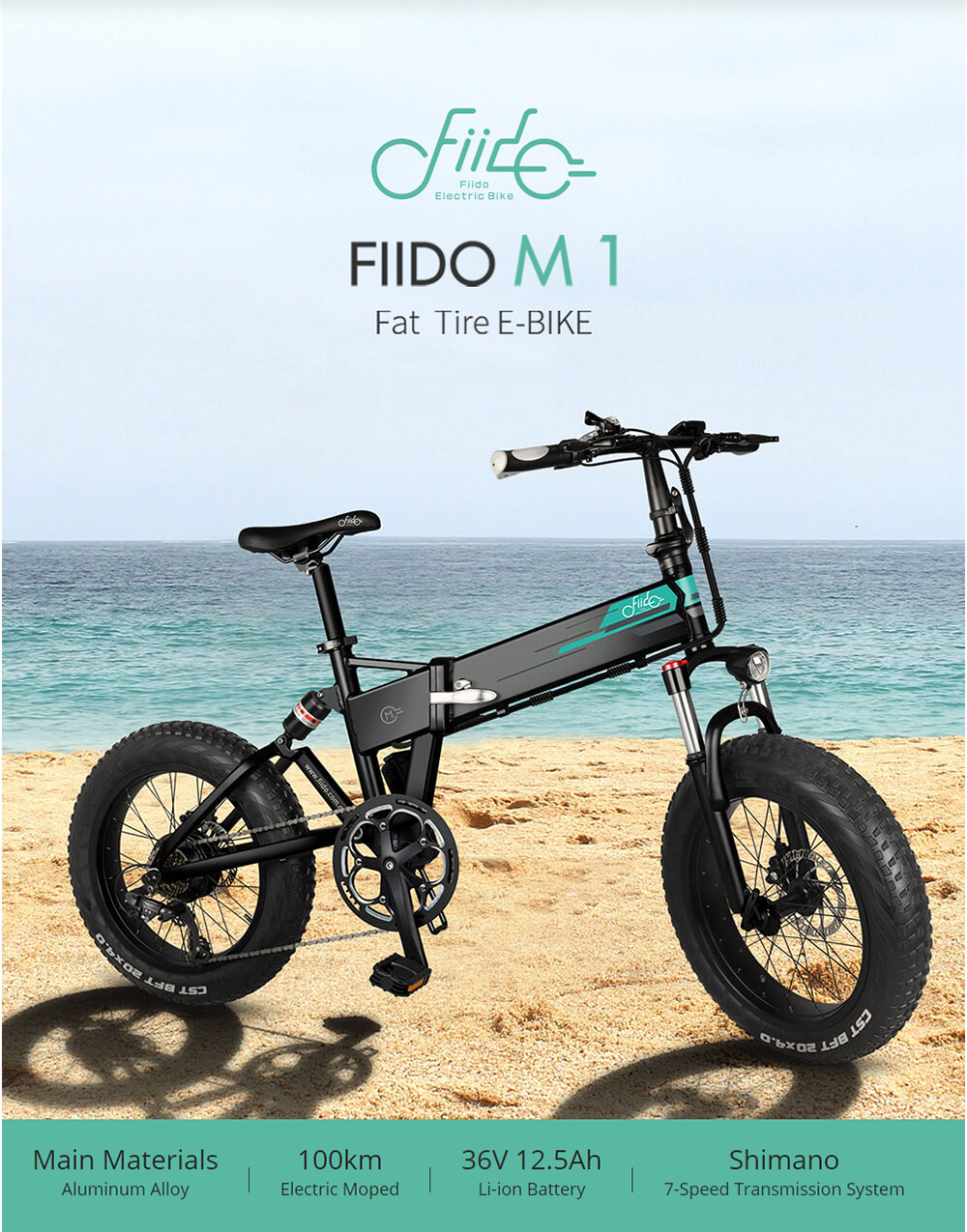 Fiido M1 Electric Cycle | Large 30-40 Mile Range