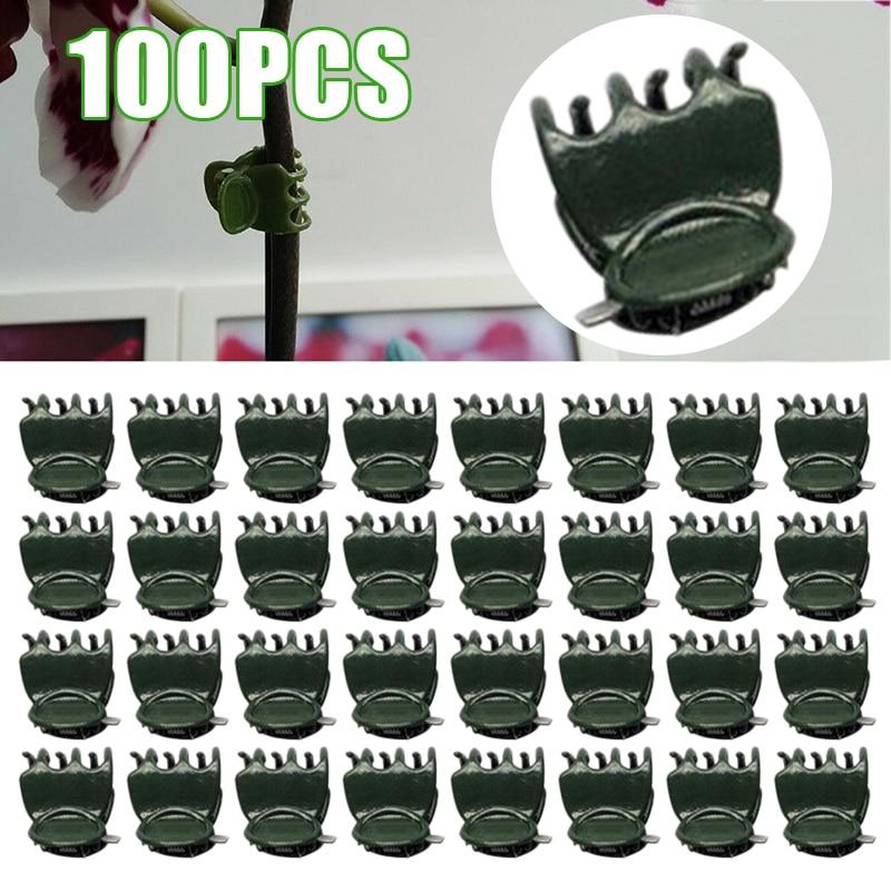 100Pcs 1.5cm Plastic Plant Fix Clips Orchid Plant Clips Stem Vine Support Vegetables Farm Flowers Fruit Tied Gardening Tool