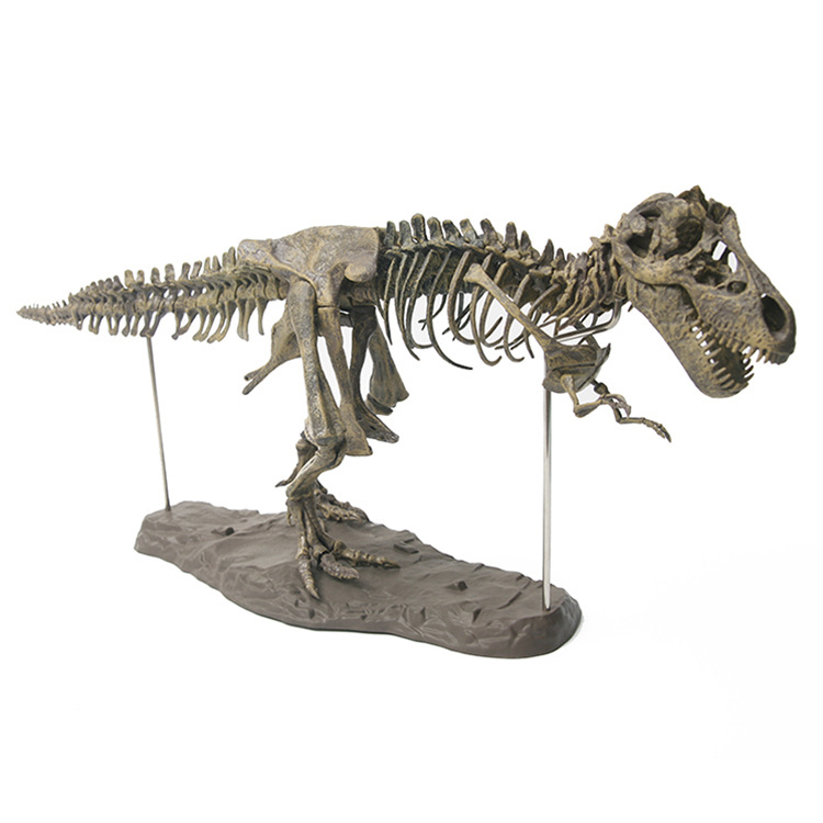 Dinosaur Model Tyrannosaurus Skeleton Model Archeology Dinosaur Bone Fossils Model Teaching Only Toy Decoration