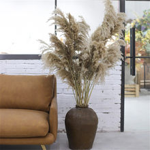 10pcs Natural Dried Flowers Pampas Grass Phragmites DIY Real Plants For Decor Home Wedding Decoration