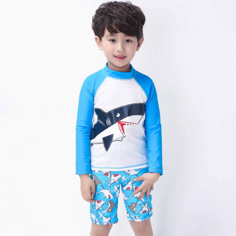 Place Of Origin Supply Of Goods South Korea Haiyishan KID'S Swimwear BOY'S Long Sleeve Sun-resistant Split Type Tour Bathing Sui