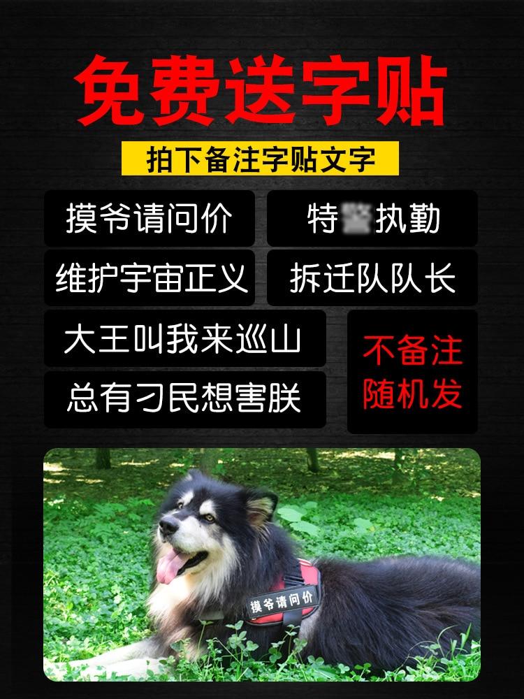 Dog Thoracic Satsuma Dog Chain Back Type Dog Hand Holding Rope Medium Large Dog Golden Retriever Suspender Strap Pet Supplies