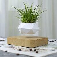 Maceta de aire para bonsái con suspensión magnética, rotación, para el hogar