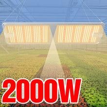 Фитолампа светодиодсветодиодный полного спектра для выращивания