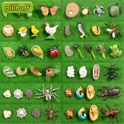 Мини-фигурки животных из ПВХ, имитация насекомых, лягушки, паука, комаров, Кита, птицы, подарки