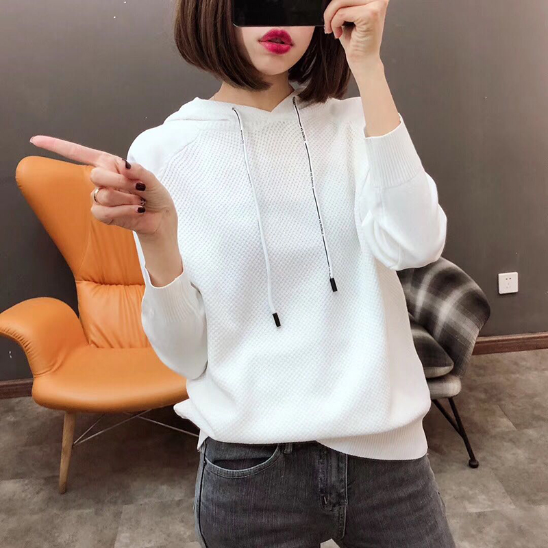 Fannic Women Ice Silk Hooded Knitted Sweater Long Sleeve Stretchy Solid Pullovers Female Casual Chic Tops