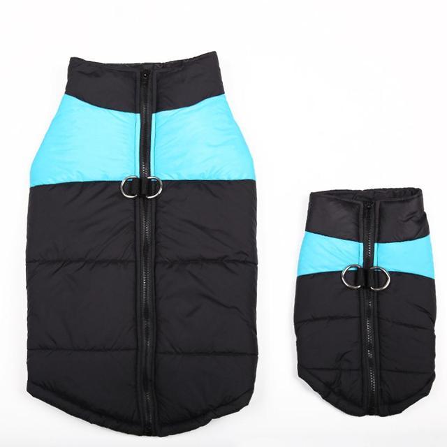 Snow Raincoat 8