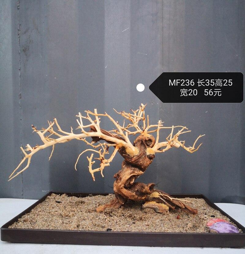 Aquarium driftwood moss tree Moss wood landscape wooden cuckoo root bonsai