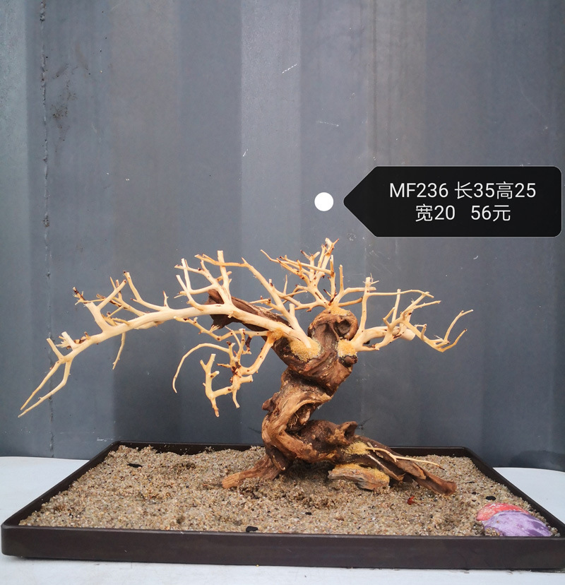 Aquarium Driftwood Moss Tree  Moss Wood Landscape Wooden Cuckoo Root  Bonsai