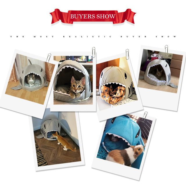 Shark Shaped House for Cats 5