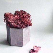 Hexagon Flowerpot Concrete Silicone Mold For Succulent Plants Round Pen Containe