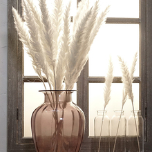 Wedding-Flower Bunch Grass-Phragmites Artificial-Plants Natural Dried Small Pampas Bulrush